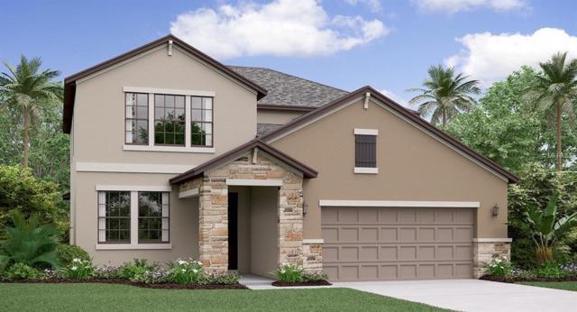 13216 Orca Sound Drive, Riverview, FL 33579 (MLS #T3174579) :: Team Bohannon Keller Williams, Tampa Properties