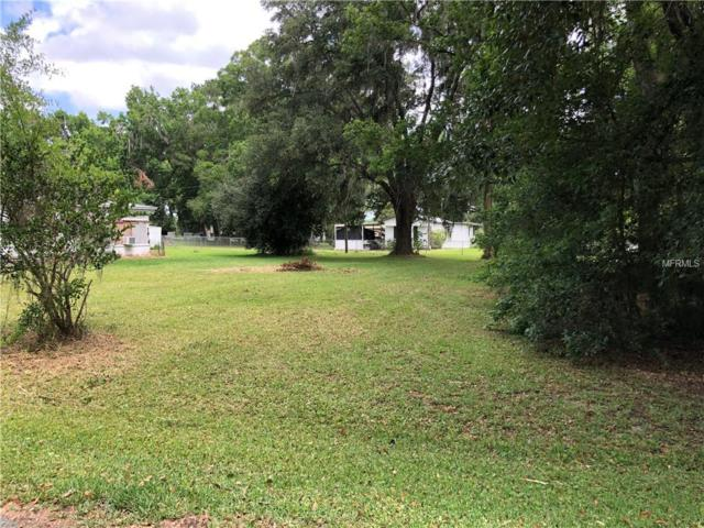7255 Landsdale Street, Brooksville, FL 34601 (MLS #T3174582) :: Bridge Realty Group