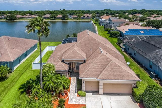 22953 Bay Cedar Drive, Land O Lakes, FL 34639 (MLS #T3174590) :: Charles Rutenberg Realty