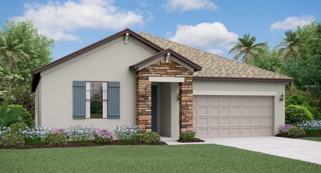 13218 Orca Sound Drive, Riverview, FL 33579 (MLS #T3174591) :: Team Bohannon Keller Williams, Tampa Properties