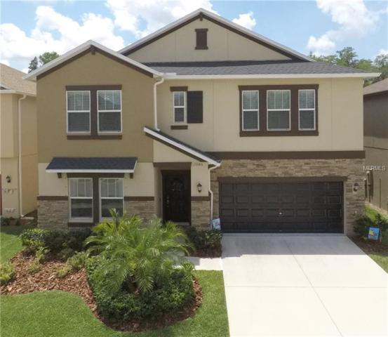 19186 Alexandrea Lee Court, Land O Lakes, FL 34638 (MLS #T3174594) :: The Duncan Duo Team