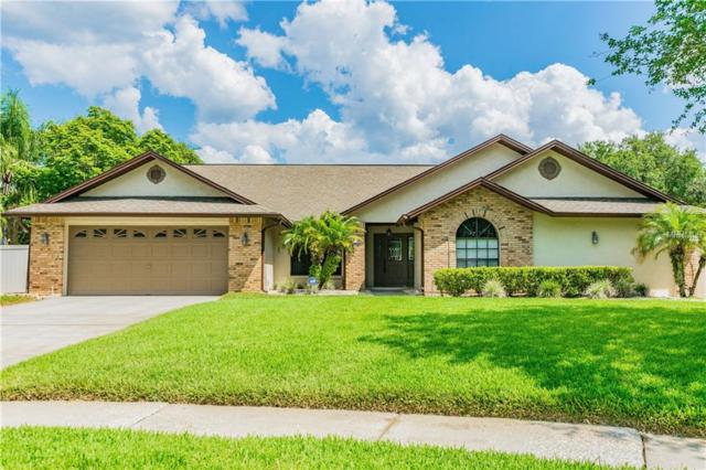 18311 Citation Street, Lutz, FL 33549 (MLS #T3174601) :: Team Bohannon Keller Williams, Tampa Properties