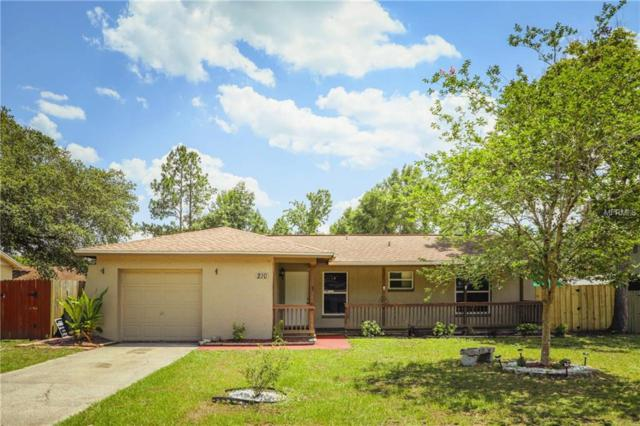 210 W Wheeler Road, Seffner, FL 33584 (MLS #T3174608) :: Team Bohannon Keller Williams, Tampa Properties