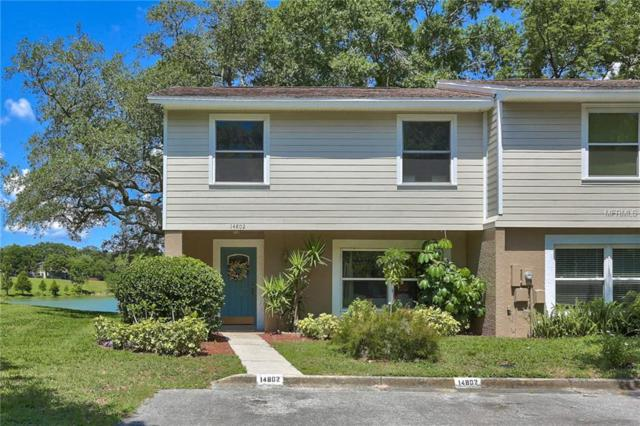 14802 Morning Drive, Lutz, FL 33559 (MLS #T3174615) :: Team Bohannon Keller Williams, Tampa Properties