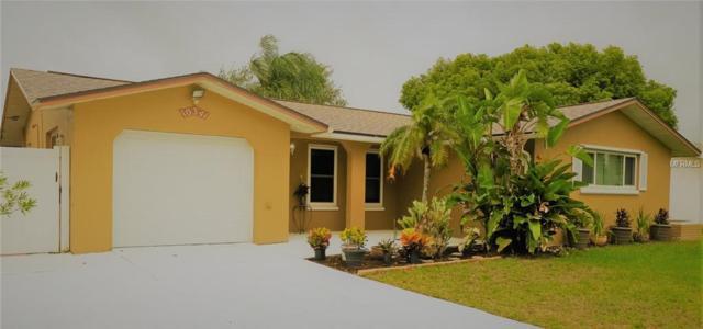 10341 Choice Drive, Port Richey, FL 34668 (MLS #T3174618) :: Team Bohannon Keller Williams, Tampa Properties