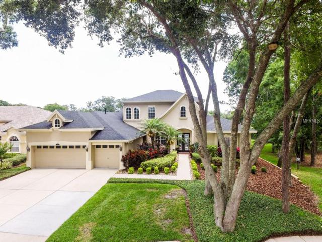 2214 Climbing Ivy Drive, Tampa, FL 33618 (MLS #T3174648) :: Medway Realty