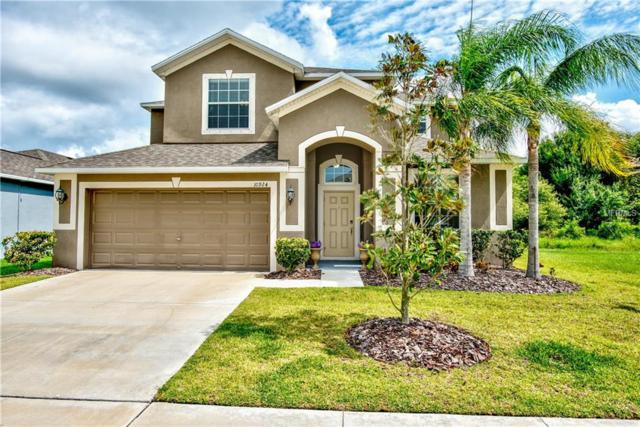 10924 Rainbow Pyrite Drive, Wimauma, FL 33598 (MLS #T3174654) :: Team Bohannon Keller Williams, Tampa Properties