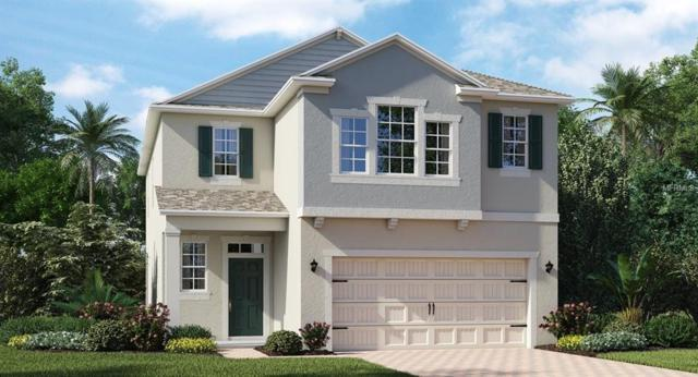3013 Prelude Lane, Kissimmee, FL 34746 (MLS #T3174833) :: The Duncan Duo Team