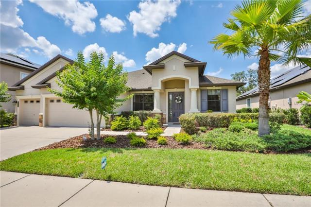 20002 Outpost Point Drive, Tampa, FL 33647 (MLS #T3174852) :: Delgado Home Team at Keller Williams