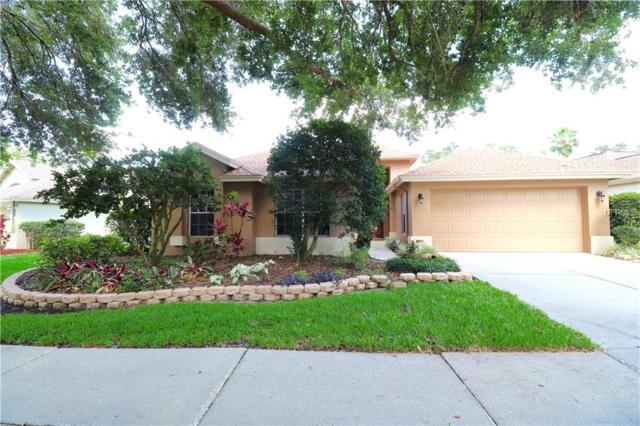 3134 Bent Creek Drive, Valrico, FL 33596 (MLS #T3174860) :: Team Bohannon Keller Williams, Tampa Properties