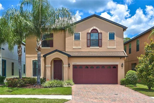 15232 Anguilla Isle Avenue, Tampa, FL 33647 (MLS #T3174865) :: Team Bohannon Keller Williams, Tampa Properties