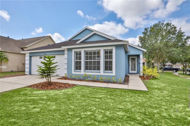12703 Bramfield Drive, Riverview, FL 33579 (MLS #T3174874) :: Medway Realty