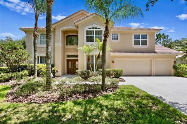 18105 Courtney Breeze Drive, Tampa, FL 33647 (MLS #T3174884) :: Cartwright Realty