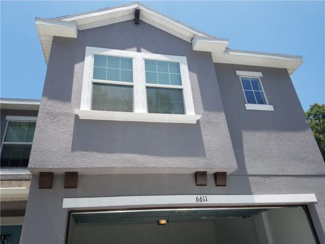 6611 Rocky Park Street, Tampa, FL 33625 (MLS #T3174926) :: Cartwright Realty