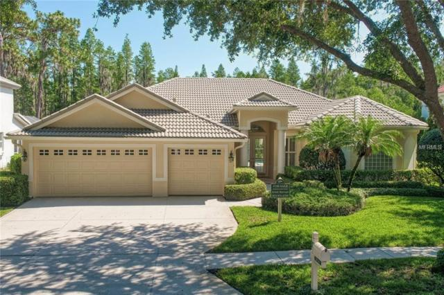 10241 Garden Alcove Drive, Tampa, FL 33647 (MLS #T3174928) :: Team Bohannon Keller Williams, Tampa Properties