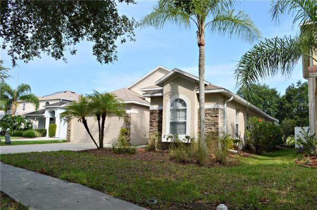 7113 Moss Ledge Run, Land O Lakes, FL 34637 (MLS #T3174976) :: Lovitch Realty Group, LLC
