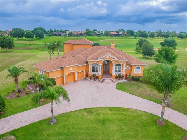 12245 Tradition Drive, Dade City, FL 33525 (MLS #T3174979) :: Team Bohannon Keller Williams, Tampa Properties
