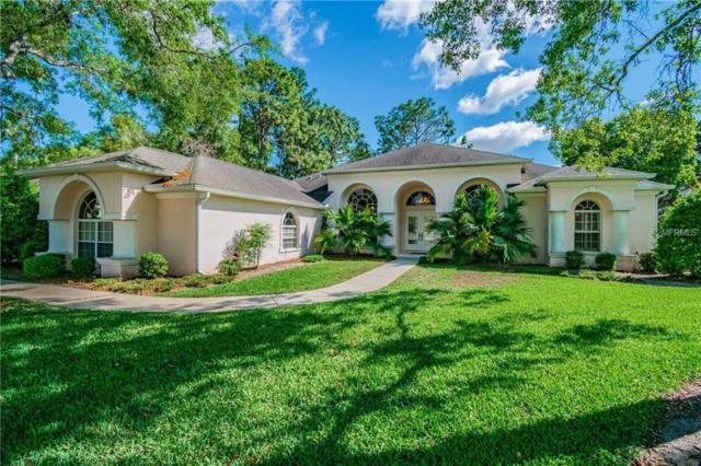 14492 Surrey Bend, Spring Hill, FL 34609 (MLS #T3174990) :: The Duncan Duo Team