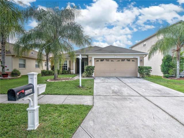 30913 Bridgegate Drive, Wesley Chapel, FL 33545 (MLS #T3174993) :: Team Bohannon Keller Williams, Tampa Properties