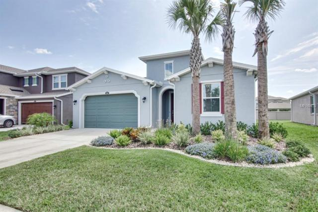 4646 Tivoli Drive, Wesley Chapel, FL 33543 (MLS #T3175013) :: Team Bohannon Keller Williams, Tampa Properties