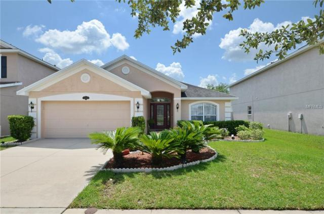 20229 Natures Spirit Drive, Tampa, FL 33647 (MLS #T3175017) :: Team Bohannon Keller Williams, Tampa Properties