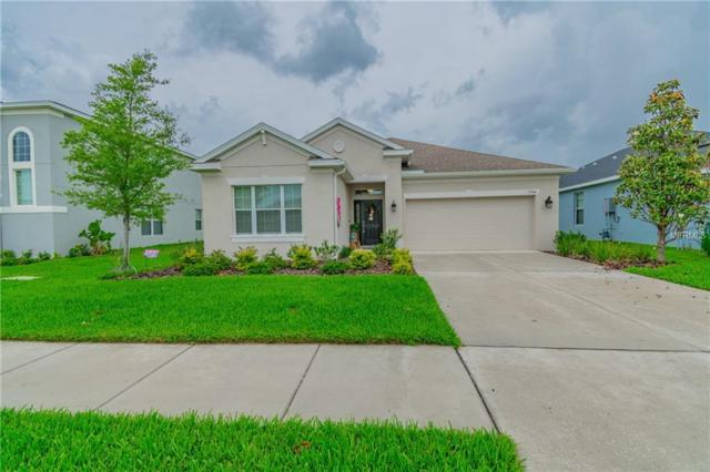 17566 Buckingham Garden Drive, Lithia, FL 33547 (MLS #T3175019) :: The Robertson Real Estate Group