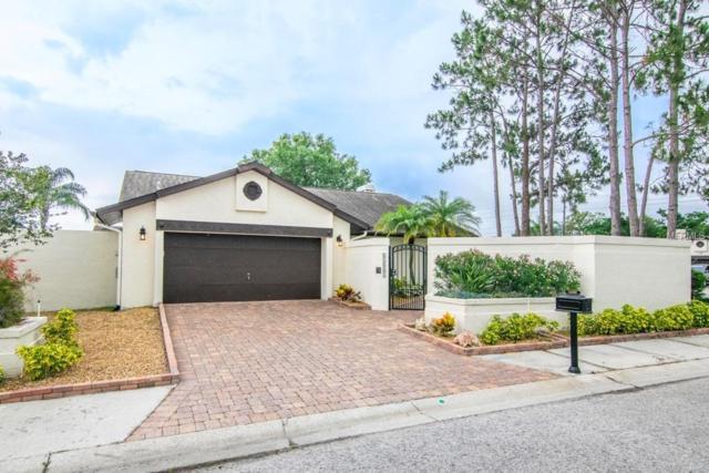 13559 Avista Drive, Tampa, FL 33624 (MLS #T3175022) :: Team Bohannon Keller Williams, Tampa Properties