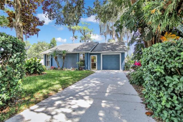 15920 Willowdale Road, Tampa, FL 33625 (MLS #T3175023) :: Cartwright Realty
