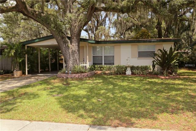 2377 Phillippe Parkway, Safety Harbor, FL 34695 (MLS #T3175025) :: Charles Rutenberg Realty