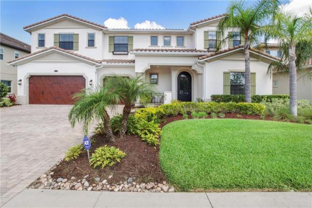 28527 Corbara Place, Wesley Chapel, FL 33543 (MLS #T3175027) :: Team Bohannon Keller Williams, Tampa Properties