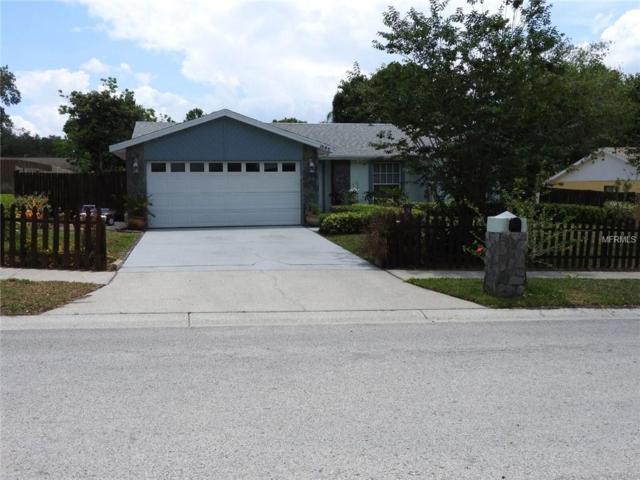 1646 Castlewood Lane, Palm Harbor, FL 34683 (MLS #T3175066) :: Delgado Home Team at Keller Williams