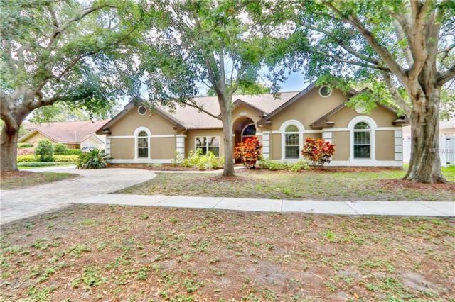 12377 Oaks Lane, Seminole, FL 33772 (MLS #T3175093) :: Team Bohannon Keller Williams, Tampa Properties