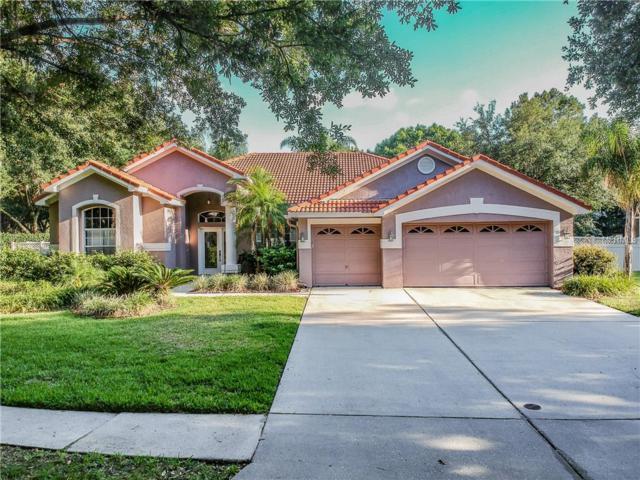 9302 Deer Creek Drive, Tampa, FL 33647 (MLS #T3175114) :: Medway Realty
