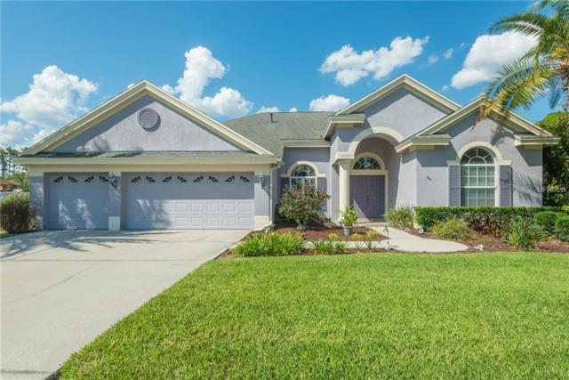 27737 Pine Point Drive, Wesley Chapel, FL 33544 (MLS #T3175115) :: Team Bohannon Keller Williams, Tampa Properties