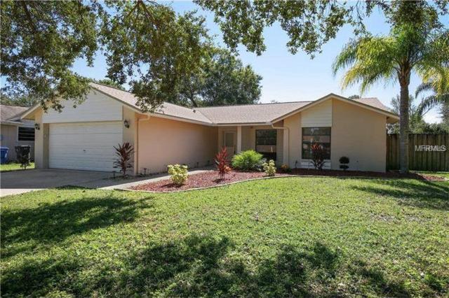 4806 Country Hills Drive, Tampa, FL 33624 (MLS #T3175118) :: Team Bohannon Keller Williams, Tampa Properties