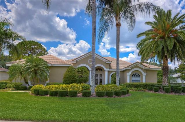 6109 Audubon Manor Boulevard, Lithia, FL 33547 (MLS #T3175130) :: The Brenda Wade Team