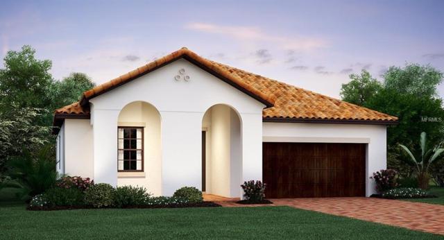 16864 Scuba Crest Street, Wimauma, FL 33598 (MLS #T3175138) :: Team Bohannon Keller Williams, Tampa Properties