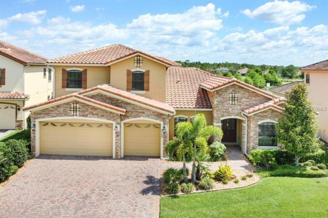 9748 Hatton Circle, Orlando, FL 32832 (MLS #T3175156) :: Griffin Group