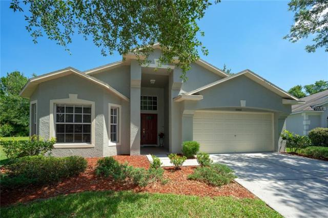 10466 Lucaya Drive, Tampa, FL 33647 (MLS #T3175172) :: Delgado Home Team at Keller Williams
