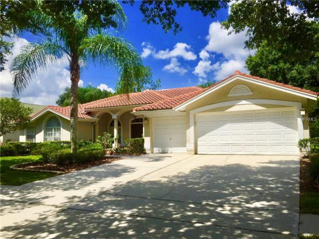 17410 Heather Oaks Place, Tampa, FL 33647 (MLS #T3175182) :: Team Bohannon Keller Williams, Tampa Properties