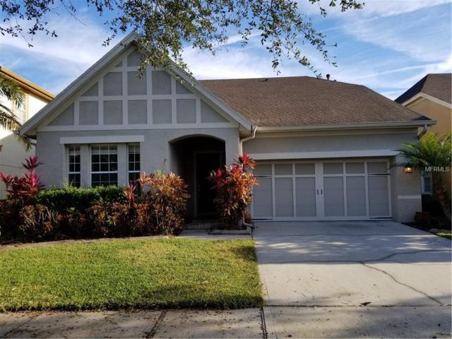 14637 Chatsworth Manor Circle, Tampa, FL 33626 (MLS #T3175215) :: Medway Realty