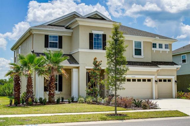 32388 Goddard Drive, Wesley Chapel, FL 33543 (MLS #T3175249) :: Team Bohannon Keller Williams, Tampa Properties