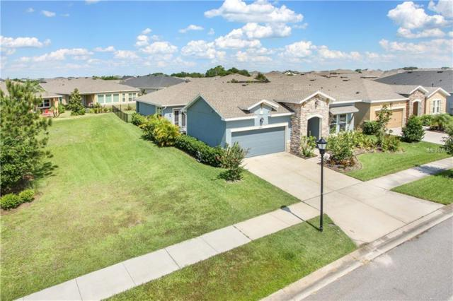 6427 Salt Creek Avenue, Apollo Beach, FL 33572 (MLS #T3175259) :: Griffin Group