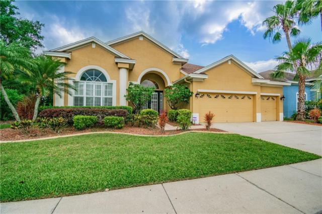 10641 Gretna Green Drive, Tampa, FL 33626 (MLS #T3175267) :: Team Bohannon Keller Williams, Tampa Properties