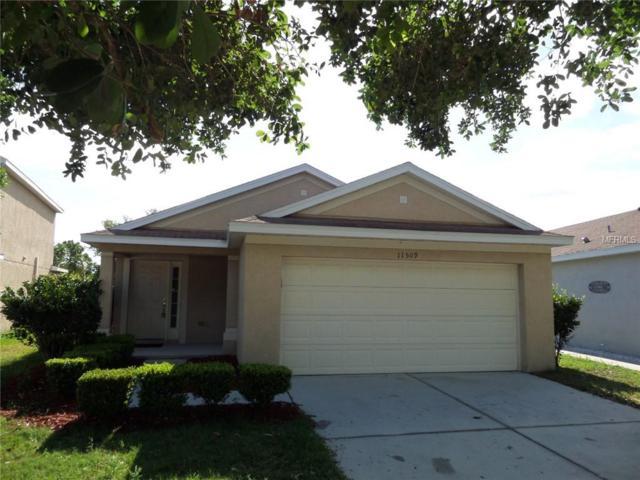 11509 Hammocks Glade Drive, Riverview, FL 33569 (MLS #T3175268) :: Team Bohannon Keller Williams, Tampa Properties