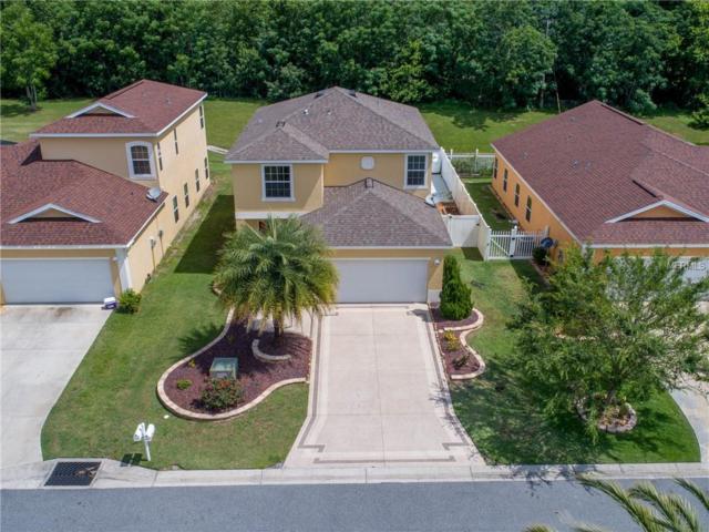 4982 NE 124TH Road, Oxford, FL 34484 (MLS #T3175284) :: Team Bohannon Keller Williams, Tampa Properties