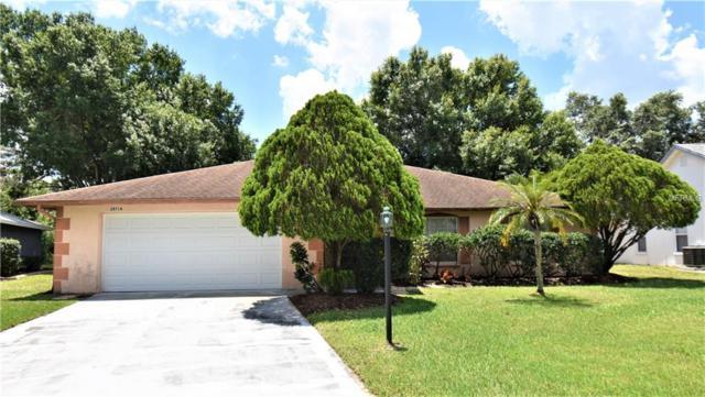 28716 Twinbrook Lane, Wesley Chapel, FL 33543 (MLS #T3175286) :: Griffin Group