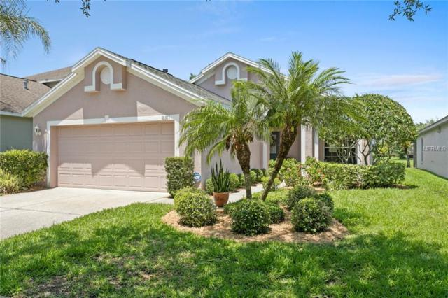 10311 Seabridge Way, Tampa, FL 33626 (MLS #T3175302) :: Team Bohannon Keller Williams, Tampa Properties