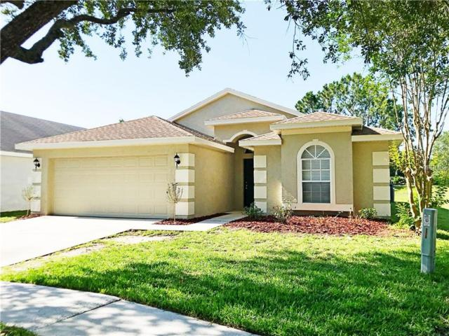 4526 Wild Plum Lane, Lutz, FL 33558 (MLS #T3175328) :: Team TLC | Mihara & Associates