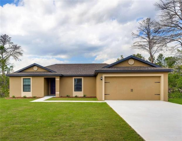 1179 Moyle Way, Mascotte, FL 34753 (MLS #T3175344) :: The Duncan Duo Team